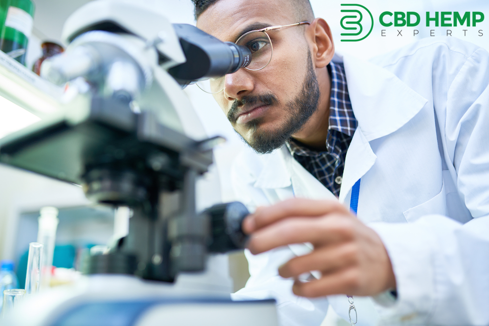 CBD Hemp Experts Develops Exclusive Hemp-Derived Wholesale and Private Label CBG Products