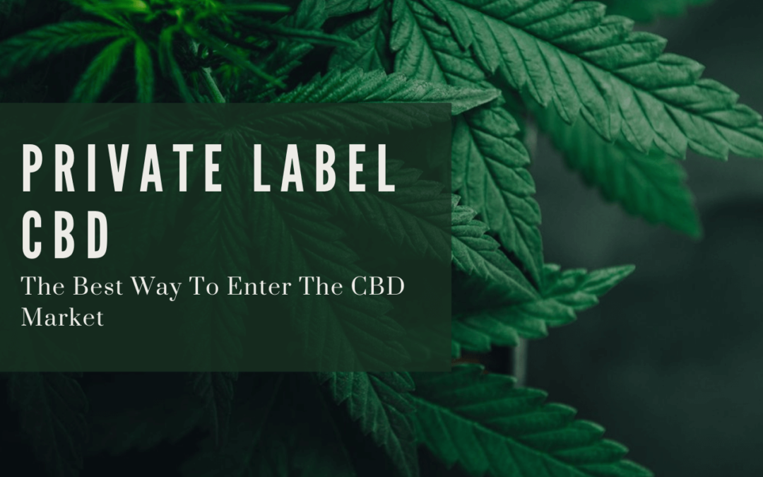 Why Private Label CBD Is The Best Market Entry Point